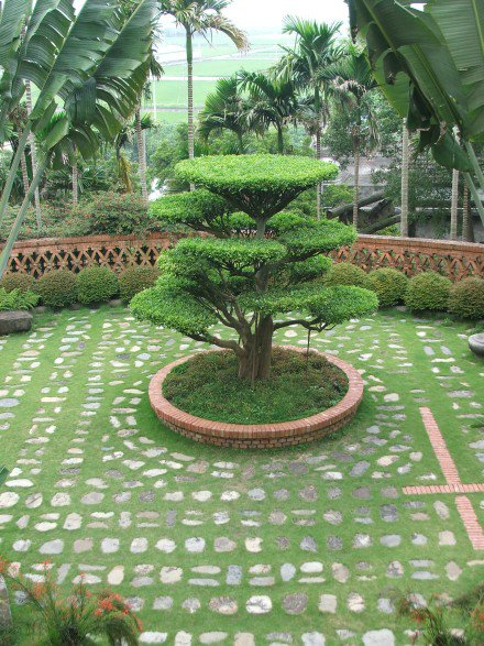 Garden design india for Indian home garden design