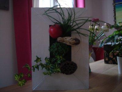 Blog de creasemailles page 3 blog de creasemailles - Cadre vegetal jardiland ...